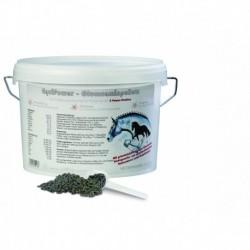 Glucosaminpellets EquiPower