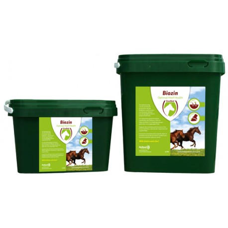 Holland Animal Care Biozin, 1 kg